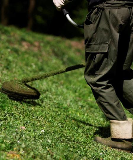 utrzymanie terenów zewnętzrnych wczystości - koszenie trawy